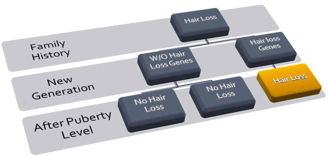 Hair Loss and Inheritence
